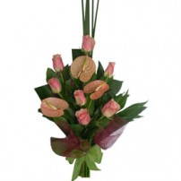 Roses & Anturios, USA