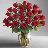 Forever Roses, USA