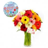 Gerberas for Mom, USA