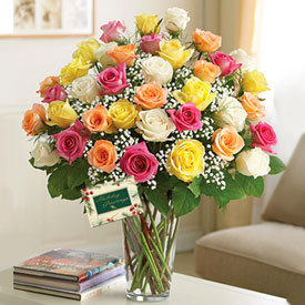 Multicolor Roses FREE CARD! - Boston